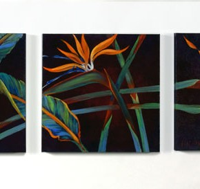 Birds of Paradise Trio