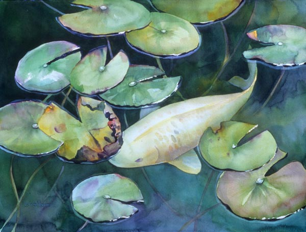 Koi - by Lucinda Hayes