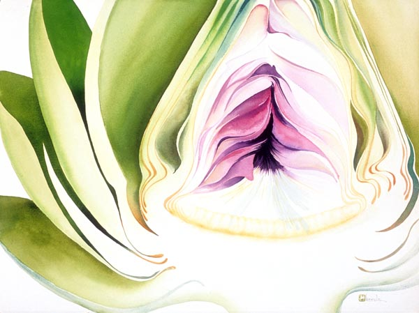 Artichoke by Lucinda Hayes