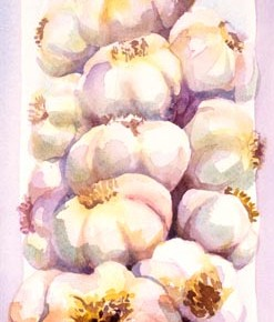 Garlic Strand