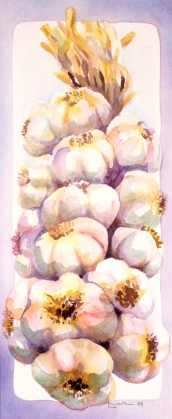 Strand of Garlic by Lucinda Hayes